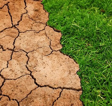 Climate-change-effects-soil